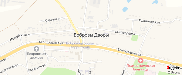 Лесная улица на карте села Бобровы Дворы с номерами домов