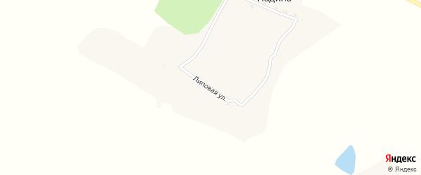 Липовая улица на карте хутора Падиной с номерами домов