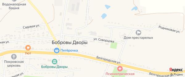 Улица Скворцова на карте села Бобровы Дворы с номерами домов