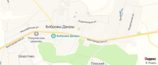 Карта хутора Залесья в Белгородской области с улицами и номерами домов