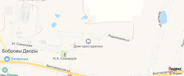 Родниковая улица на карте села Бобровы Дворы с номерами домов
