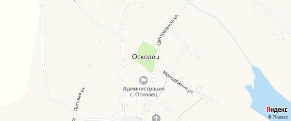 Молодежная улица на карте села Оскольца с номерами домов