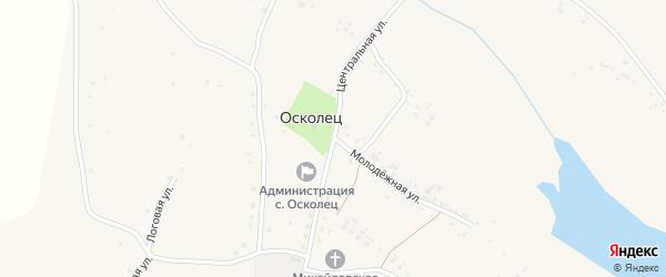 Центральная улица на карте села Оскольца с номерами домов