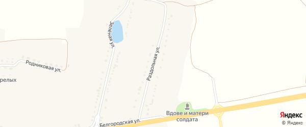 Раздольная улица на карте села Бобровы Дворы с номерами домов