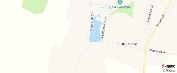 Овражная улица на карте села Присынки с номерами домов
