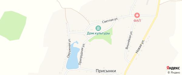 Припрудная улица на карте села Присынки с номерами домов