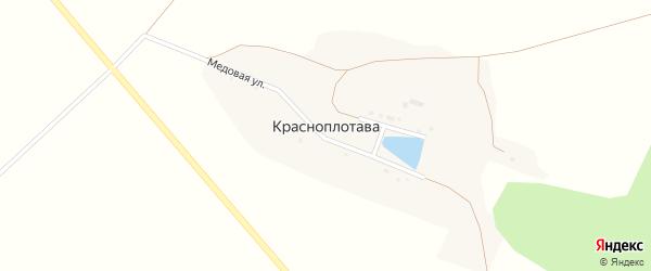 Медовая улица на карте хутора Красноплотавы с номерами домов