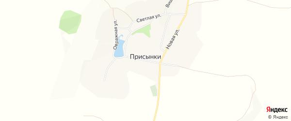 Карта села Присынки в Белгородской области с улицами и номерами домов