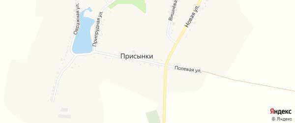 Полевая улица на карте села Присынки с номерами домов
