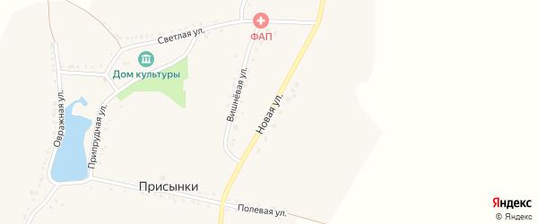 Новая улица на карте села Присынки с номерами домов