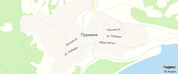Карта села Пурнема в Архангельской области с улицами и номерами домов