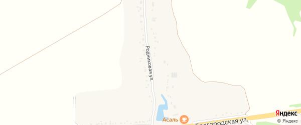Родниковая улица на карте села Евгеньевки с номерами домов