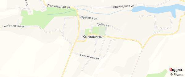 Карта села Коньшино в Белгородской области с улицами и номерами домов