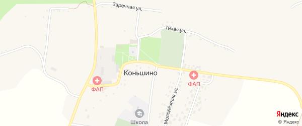 Центральная улица на карте села Коньшино с номерами домов