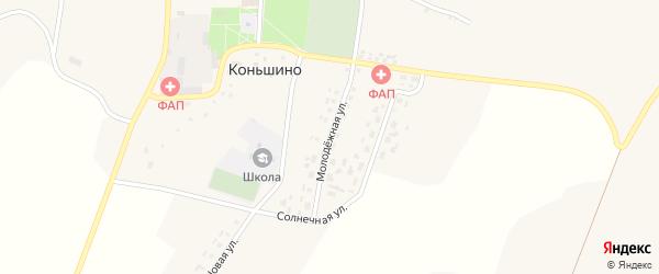 Молодежная улица на карте села Коньшино с номерами домов