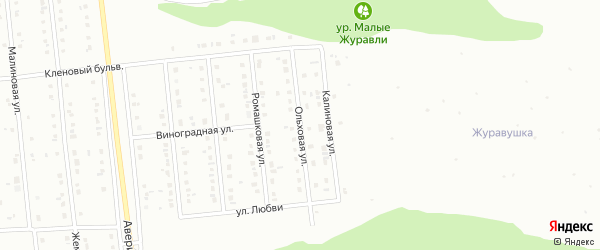 Ольховая улица на карте Губкина с номерами домов