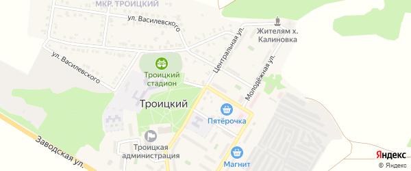 Центральная улица на карте Троицкого поселка с номерами домов