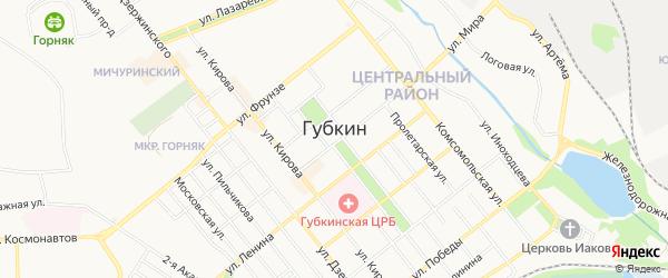 Карта садового некоммерческого товарищества Губкин г Грачев Лог сад города Губкина в Белгородской области с улицами и номерами домов