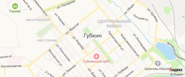 Карта садового некоммерческого товарищества Губкин г Лебеди сад города Губкина в Белгородской области с улицами и номерами домов