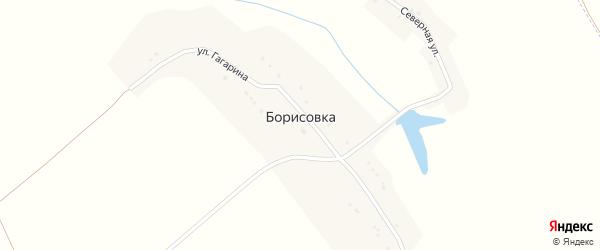 Улица Гагарина на карте села Борисовки с номерами домов
