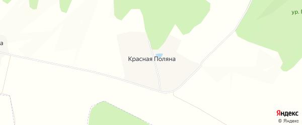 Карта поселка Красная Поляна в Белгородской области с улицами и номерами домов