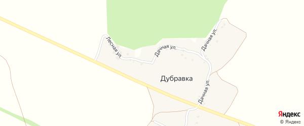 Дачная улица на карте хутора Дубравки с номерами домов