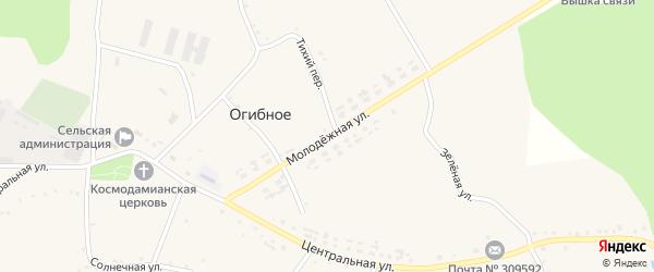 Молодежная улица на карте Огибного села с номерами домов