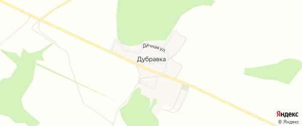 Карта хутора Дубравки в Белгородской области с улицами и номерами домов