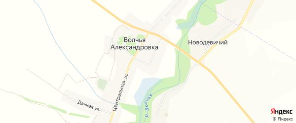 Карта села Волчьей Александровки в Белгородской области с улицами и номерами домов