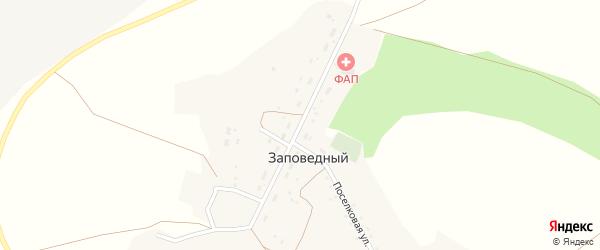 Центральная улица на карте Заповедного поселка с номерами домов