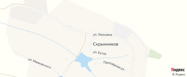 Улица Леоновка на карте хутора Скрынникова с номерами домов
