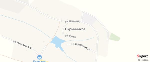 Центральная улица на карте хутора Скрынникова с номерами домов