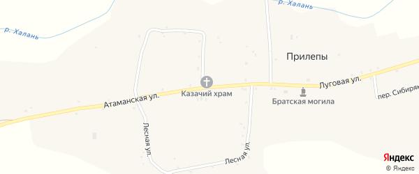Атаманская улица на карте села Прилепы с номерами домов