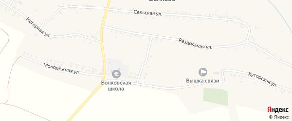 Полевой переулок на карте села Волково с номерами домов