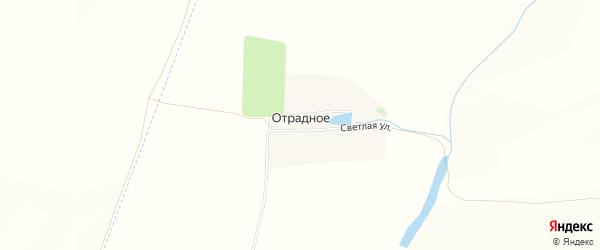 Карта поселка Отрадного в Белгородской области с улицами и номерами домов