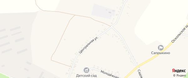 Центральная улица на карте села Сапрыкино с номерами домов