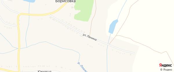Улица Ленина на карте села Борисовки с номерами домов