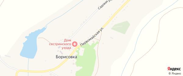 Первомайская улица на карте села Борисовки с номерами домов