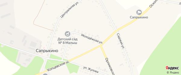 Лесная улица на карте села Сапрыкино с номерами домов