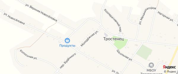 Молодежная улица на карте села Тростенец с номерами домов