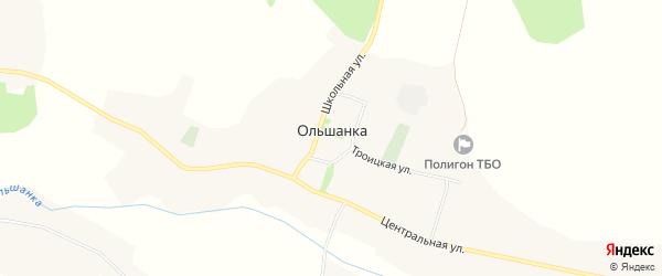 Карта села Ольшанки в Белгородской области с улицами и номерами домов