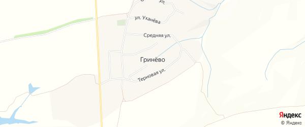 Карта села Гринево в Белгородской области с улицами и номерами домов
