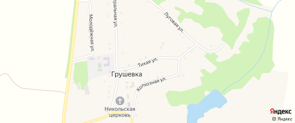 Тихая улица на карте села Грушевка с номерами домов