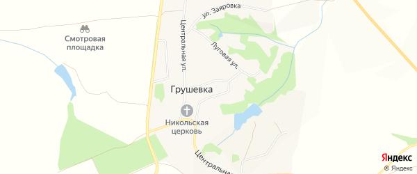 Карта села Грушевка в Белгородской области с улицами и номерами домов