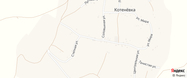 Центральная улица на карте села Котеневки с номерами домов