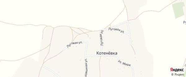 Луговая улица на карте села Котеневки с номерами домов