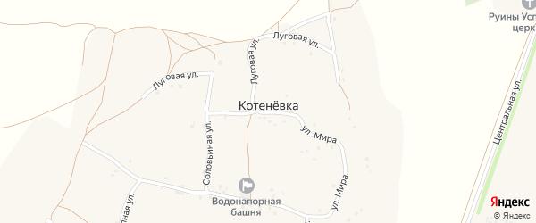 Степная улица на карте села Котеневки с номерами домов