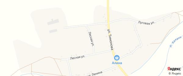 Лесная улица на карте села Русской Халани с номерами домов