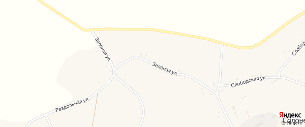 Зеленая улица на карте села Солонца-Поляны с номерами домов