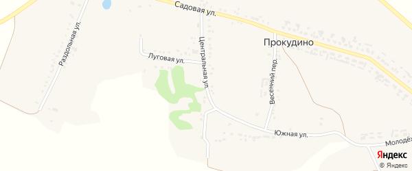 Центральная улица на карте села Прокудино с номерами домов